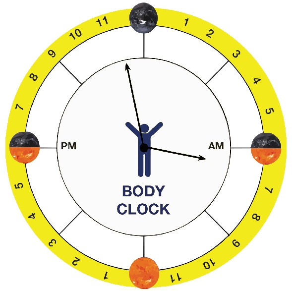 how to change your body clock