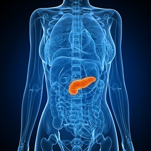 Location of the pancreas in the body
